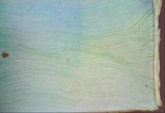 linescolor2.jpg