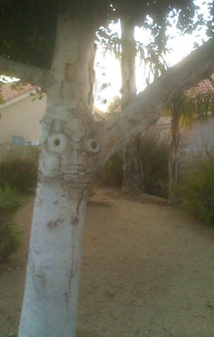 Homer Simpson's in a tree