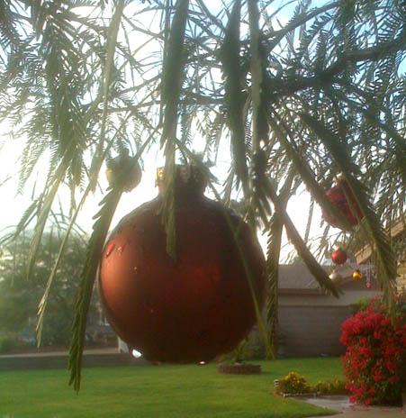 Dew on ornament