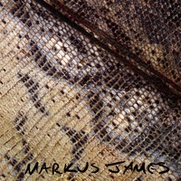 Snakeskin Violin, Markus James