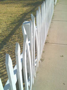 White picket fence, baked in the heat.