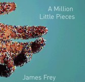 Book cover from A Million Little Pieces by James Frey.