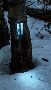 One of Daniel Barreto's houses embedded in a tree.