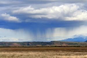 Walking rainstorm in the desert. Photo: Erin and Lance Willett Flickr/Creative Commons License