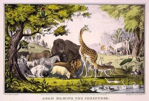 """Adam Naming the Creatures"", 1847. Currier & Ives print, Library of Congress Prints and Photographs, LOC #LC-USZC4-2780."