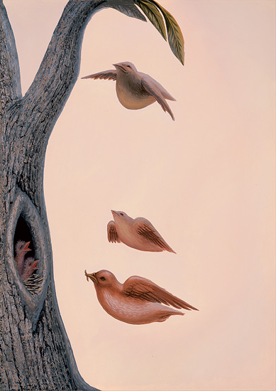 Family of birds © Octavio Ocampo