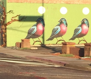 Mural of birds on a wall in downtown Phoenix.